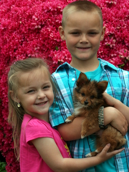 from the Strevig Family ( from Pasadena, Md. )  with their new little Yorkillon Puppy, jake