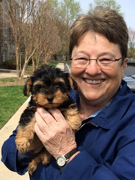 Kacy was Pickles from Ruby and JoJo's litter of Yorki-Poos.   Joanne is from Rehoboth, De.